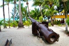 Äldre japanska vapen på ön av Saipan Royaltyfria Foton