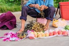Äldre kinesisk kvinna som säljer grönsaker och frukter i Kina royaltyfri bild