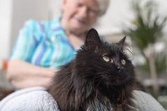 Äldre kvinna med hennes husdjur royaltyfria bilder