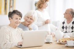 Äldre kvinna som använder bärbara datorn fotografering för bildbyråer