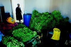 äldre kvinna som säljer bananer från hennes främre rum royaltyfri bild