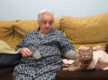 Äldre kvinna som slår hennes katt Royaltyfri Bild