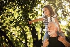 Äldre man som bär hans sondotter på hans skuldror i trädgård royaltyfri fotografi