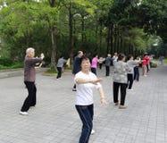 Äldre praktiserande tai-chi övning i morgonen Royaltyfri Bild