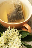 äldre tea Arkivbild