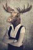 Älg i kläder Begreppsdiagram i tappningstil Royaltyfri Fotografi