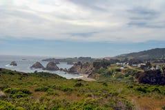 Älg Kalifornien arkivfoton