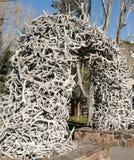 Älgkrona Arche i Jackson Hole Royaltyfri Bild