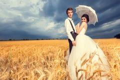 Älska bruden och brudgummen i vetefält med blå himmel i backgen Royaltyfri Foto