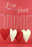 Älska dig med allt mitt hjärtameddelande med röda och kräm- hjärtor som hänger från pinnor på en linje Royaltyfri Fotografi