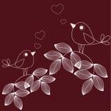 älska för fåglar Royaltyfria Foton