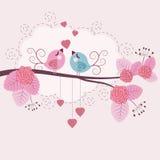 älska för fåglar Arkivfoto