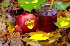 Älska granatäpplecoctailen för vård- och bra lynne Arkivfoton