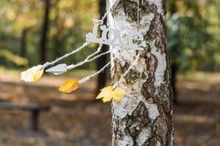 älska hösten Arkivfoton