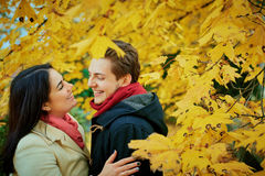Älska kramar för ett par i en parkera i höst Arkivbilder