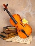 älska musik för duckling Royaltyfri Fotografi