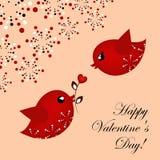 Älska par av fåglar Arkivfoton