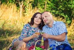 Älska par på picknicken Royaltyfria Bilder