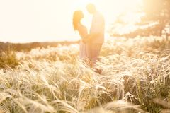 Älska par som kysser på solnedgången, fokus på förgrund arkivbild