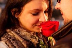 Älska par som tycker om solen med den röda rosen Royaltyfri Fotografi