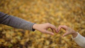 Älska studenter som sätter deras händer i form av hjärta, höstromans, datum stock video
