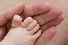 älska touch för fader Royaltyfri Bild