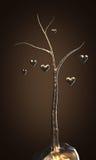 älska treen Royaltyfri Fotografi
