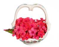 älskade blommor Royaltyfri Fotografi