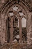 Älsklingabbotskloster Royaltyfri Bild