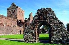 Älsklingabbotskloster, Dumfries & Galloway Royaltyfri Fotografi