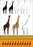 """Älsklings- giraff†""""det mest högväxta djuret i Afrika vektor illustrationer"""