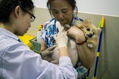 Älsklings- sjukhus för kines Royaltyfri Bild