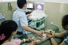 Älsklings- sjukhus för kines Royaltyfri Fotografi