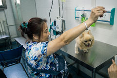 Älsklings- sjukhus för kines Arkivbild