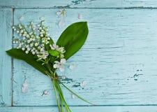 Älskvärd bukett av liljekonvaljer Arkivbild