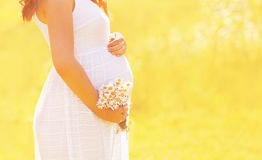 Älskvärd gravid kvinna i den vita klänningen med vildblommor royaltyfri fotografi
