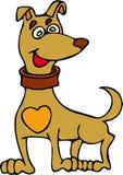 älskvärd hund Fotografering för Bildbyråer