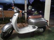 Älskvärd moped Royaltyfria Foton