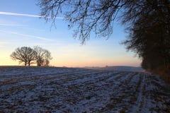 Älskvärd morgon på en kall morgon Arkivfoto