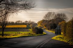 Älskvärd och ensam väg under hösten royaltyfri foto