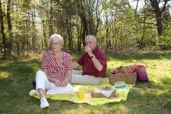 älskvärd picknick Arkivfoto