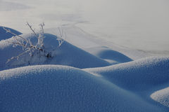 Älskvärd snöpacke Royaltyfri Bild