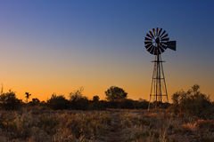 Älskvärd solnedgång i Kalahari med väderkvarnen och gräs Arkivbilder
