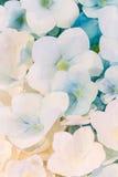 Älskvärd stil för färgrik pappers- bakgrundsmodell för blommor Arkivfoto