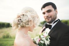 Älskvärda brölloppar, brud och brudgum som poserar i fält under solnedgång Arkivbilder