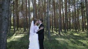 Älskvärda brölloppar som kysser i skogen arkivfilmer