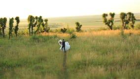 Älskvärda brölloppar som kysser slappt i den härliga solnedgången för skog på bakgrund Charmigt ögonblick arkivfilmer