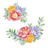 Älskvärda buketter med pionen, ros, lämnar, blommor, filialer och bär stock illustrationer