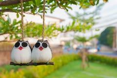 Älskvärda fågeldockor som hängs på ett träd Arkivfoto