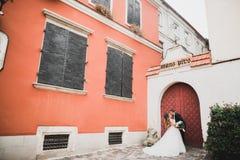 Älskvärda lyckliga brölloppar, brud med den långa vita klänningen royaltyfri fotografi